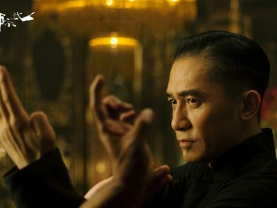 watch The Grandmaster streaming