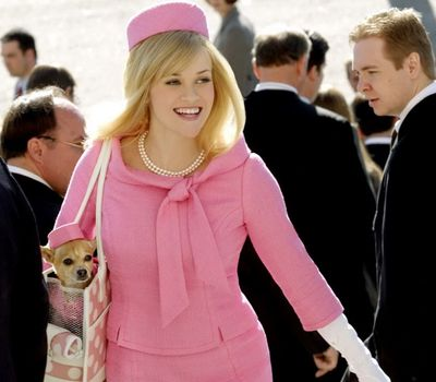 Legally Blonde 2: Red, White & Blonde online