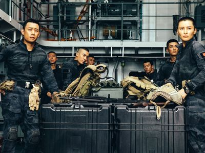 watch Operation Red Sea streaming
