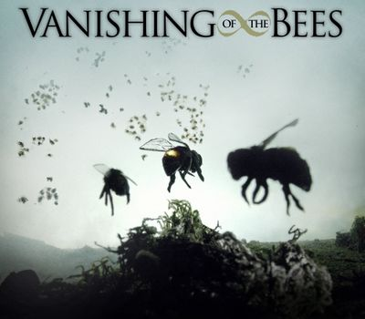 Vanishing of the Bees online