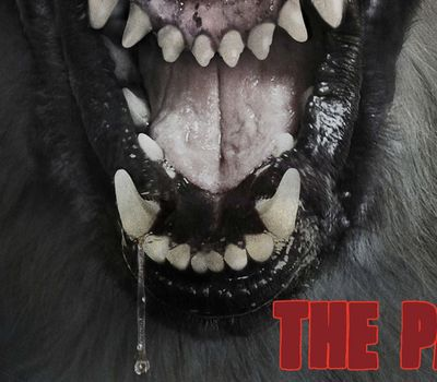 The Pack online