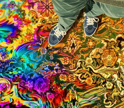Have a Good Trip: Adventures in Psychedelics online