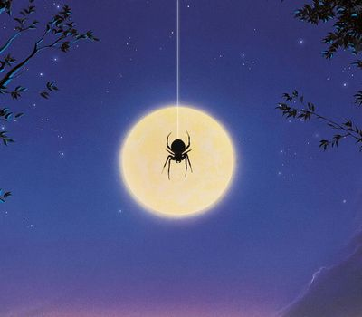 Arachnophobia online