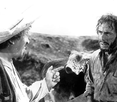 The Treasure of the Sierra Madre online