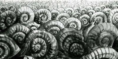 Les Escargots STREAMING