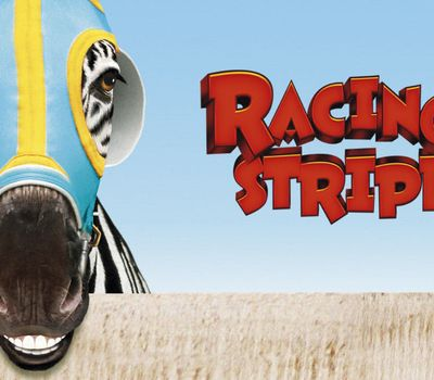 Racing Stripes online