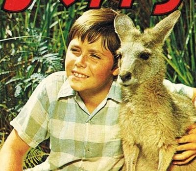 Skippy the Bush Kangaroo online