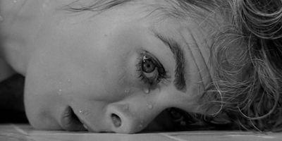 78.52 Les Derniers Secrets De Psychose en streaming
