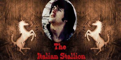 L'Étalon italien STREAMING