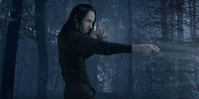 Severus Snape and the Marauders en streaming