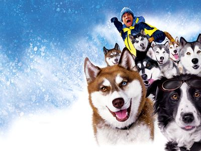 watch Snow Dogs streaming
