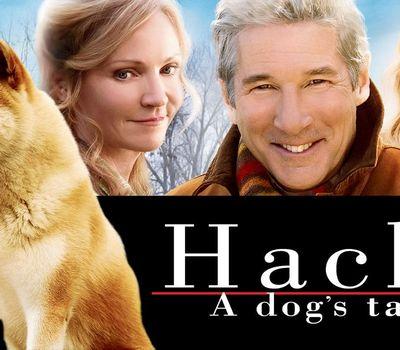 Hachi: A Dog's Tale online