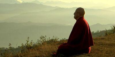 Vers un monde altruiste? STREAMING