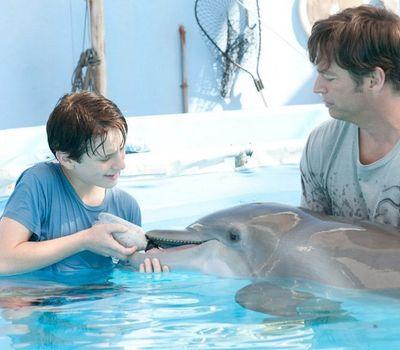 Dolphin Tale online