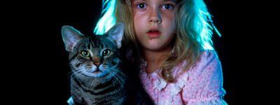 Cat's Eye online