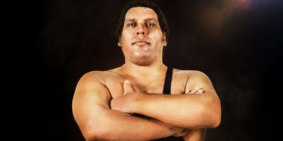 Andre the Giant en streaming
