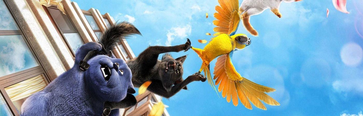 Voir film Oscar et le monde des chats en streaming