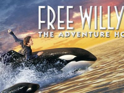 watch Free Willy 2: The Adventure Home streaming