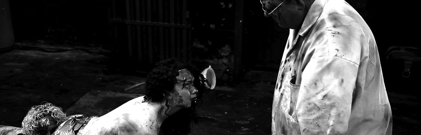Voir film The Human Centipede 2 (Full Sequence) en streaming