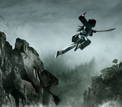 Crouching Tiger, Hidden Dragon: Sword of Destiny online