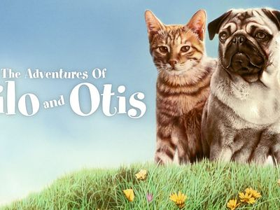 watch The Adventures of Milo and Otis streaming