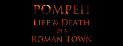 Pompeii: Life and Death in a Roman Town online
