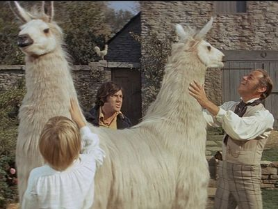watch Doctor Dolittle streaming