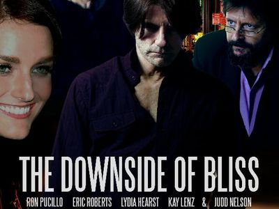 watch The Downside of Bliss streaming