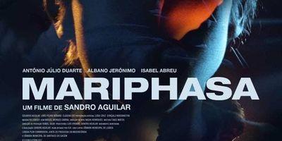 Mariphasa en streaming