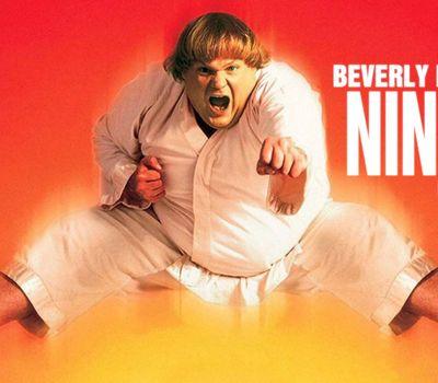 Beverly Hills Ninja online