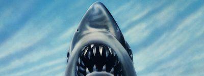 Les Dents de la mer 3 online