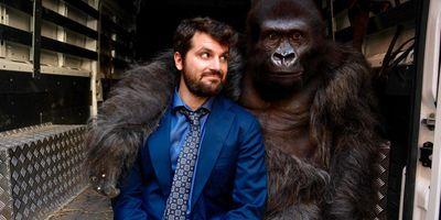 Attenti al gorilla en streaming