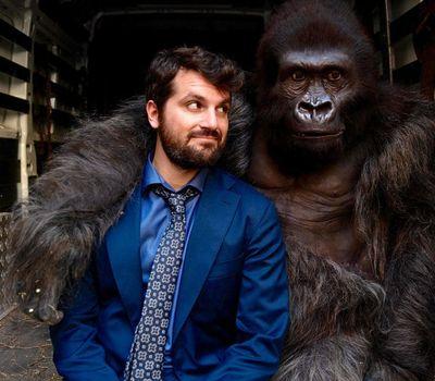 Attenti al gorilla online
