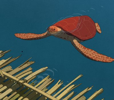 The Red Turtle online