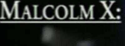 Malcolm X: Make It Plain online