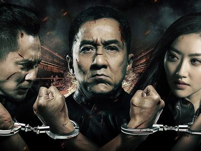 watch Police Story 2013 streaming