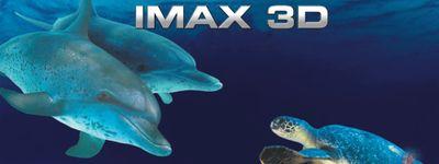 Les Merveilles de l'Océan 3D online
