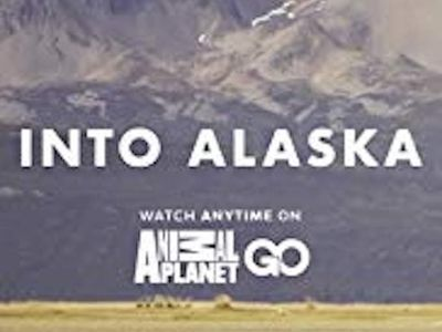 watch Into Alaska streaming