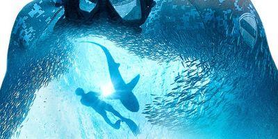 Sharkwater: Extinction en streaming
