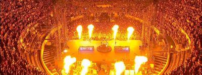 Metallica: Français pour une nuit online