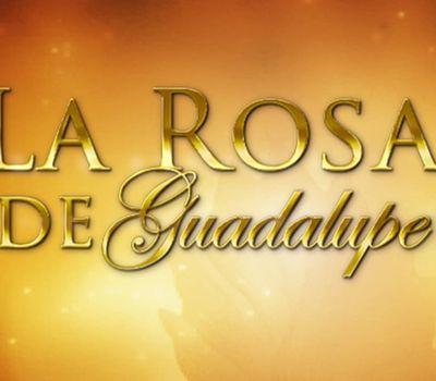 La rosa de Guadalupe online