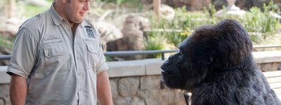 Zookeeper online