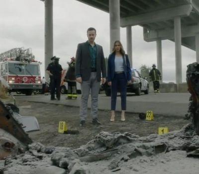 Hailey Dean Mystery: Murder, With Love online