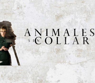 Animales sin collar online