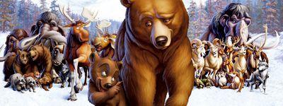 Frère des ours online