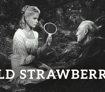 Wild Strawberries online