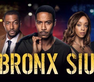 Bronx SIU online