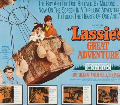 The Great Adventure online
