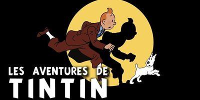 Les aventures de Tintin - Vol. 16, L'affaire Tournesol STREAMING