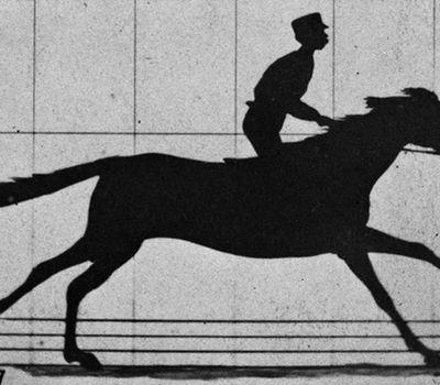 Sallie Gardner at a Gallop online